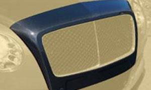 Окантовка решетки радиатора (под покраску / карбон) Mansory для Bentley Continental GT II