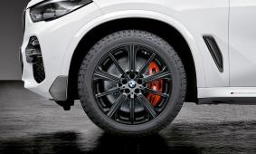 Легкосплавный колесный диск (звездообразные спицы) 749M для BMW X6 G06