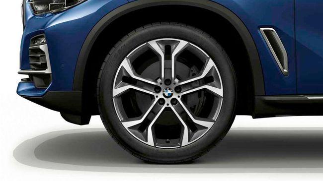 Легкосплавный колесный диск (Y-образные спицы) 744 для BMW X6 G06