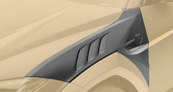 Передние крылья (с карбоновыми элементами) Mansory для Lamborghini Urus
