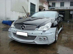 WALD для Mercedes CLS-class (W219)