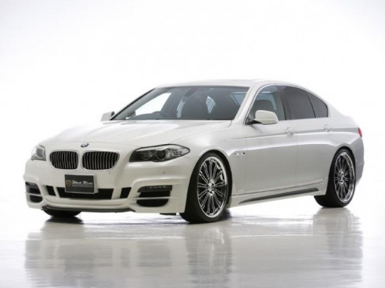 Wald Bison для BMW 5-серия (F10)