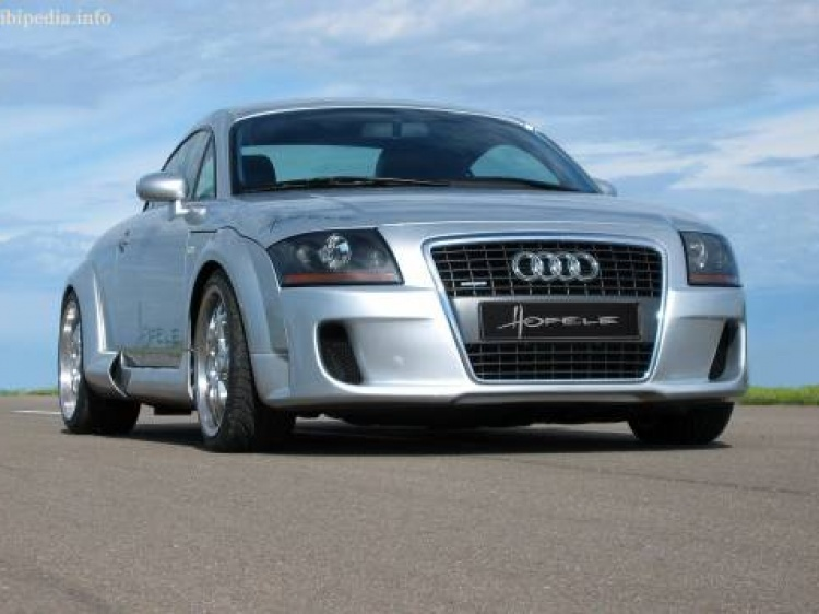 Hofele для Audi TT (8N)