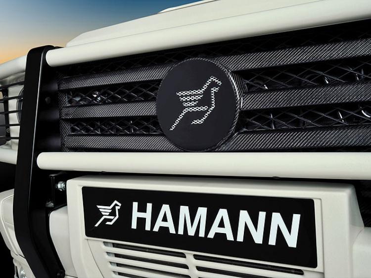 Аксессуары Hamann AMG G 55 (W 463)